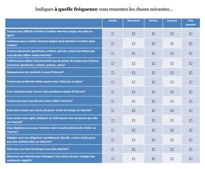 questionnaire usages d'internet