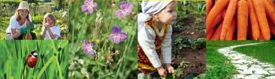 Mon jardin en santé... sans pesticides